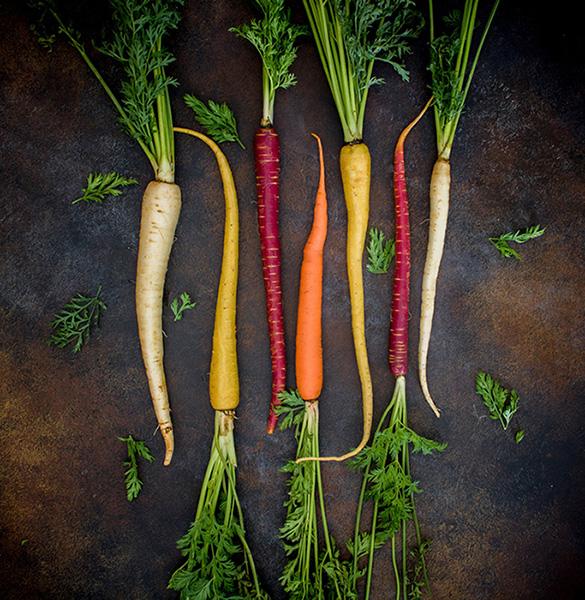 carottes de couleurs