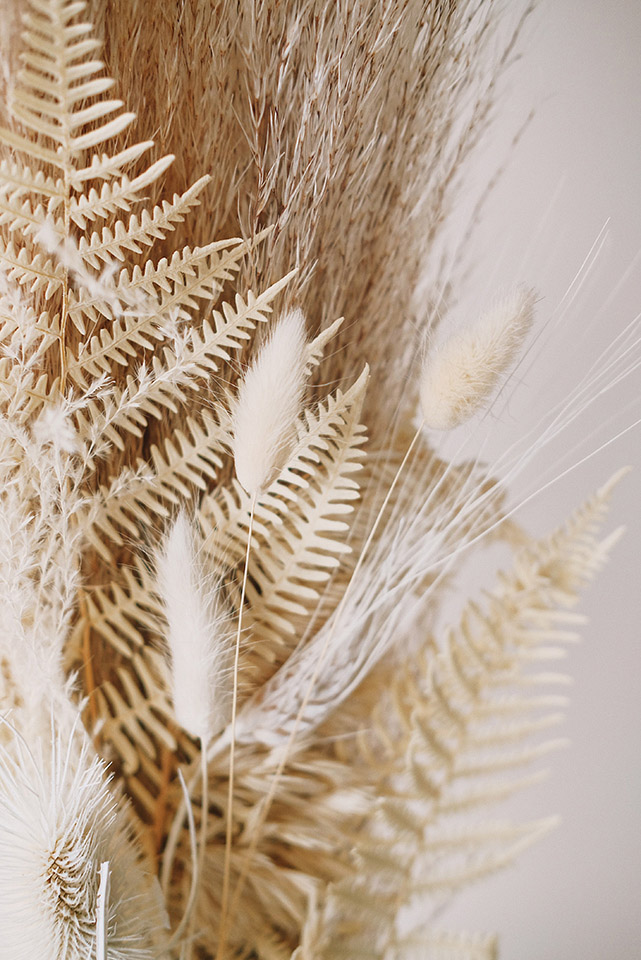 épi de blé